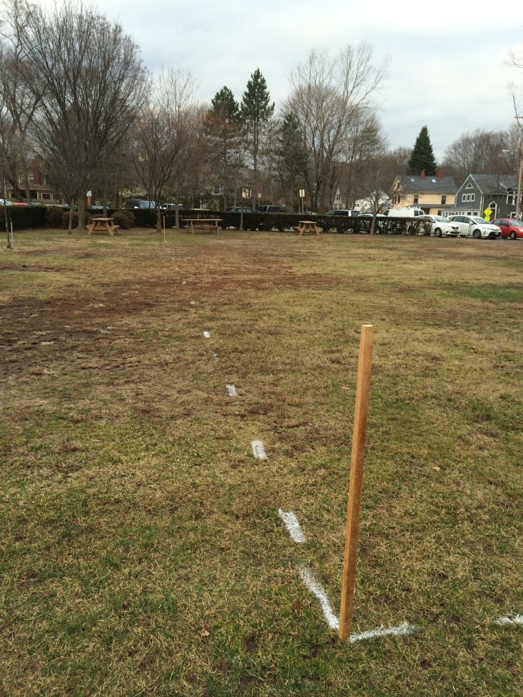 Stakes and marking outline the approximate placement of the rink on the park.